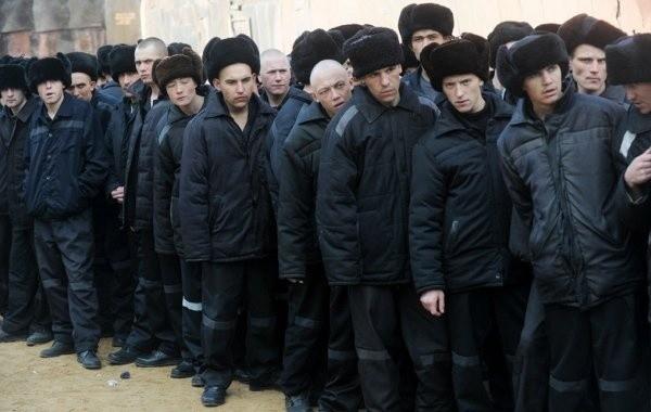 Правозащитники выдвинули инициативу о проведении уголовной амнистии в России