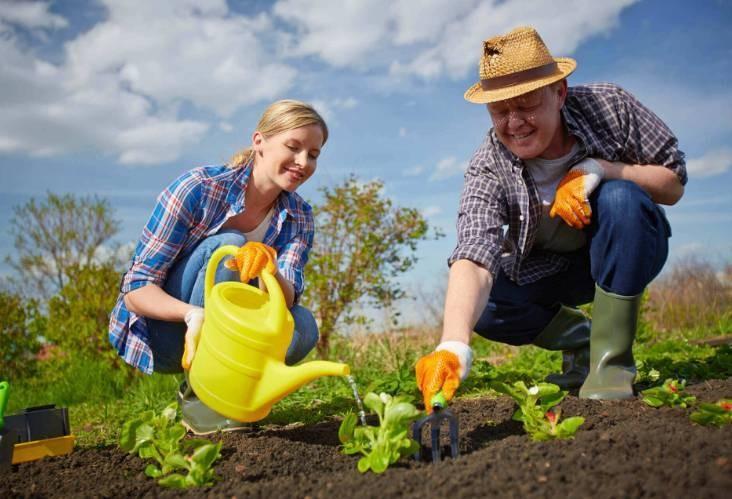 Можно ли в праздник Николы Летнего 22 мая 2021 года работать на огороде и традиции дня