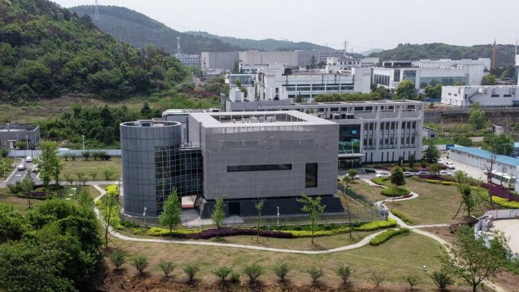 Что произошло в Уханьской лаборатории вирусологии?