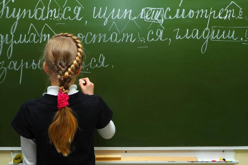 В Совфеде выступают за введение санкций странам, которые ущемляют русский язык