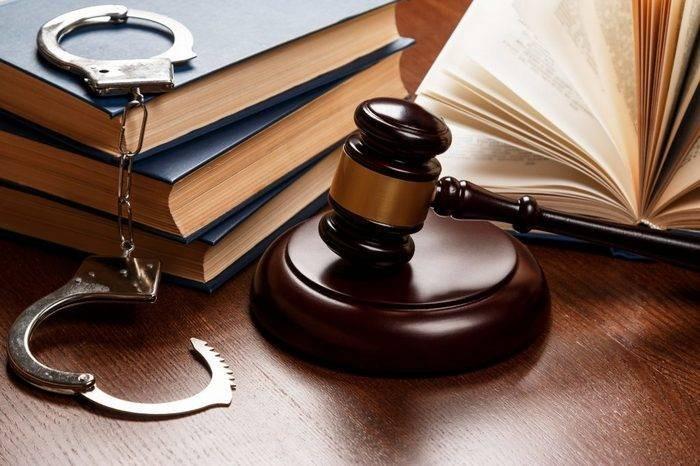 О чем говорится в законе Димы Яковлева