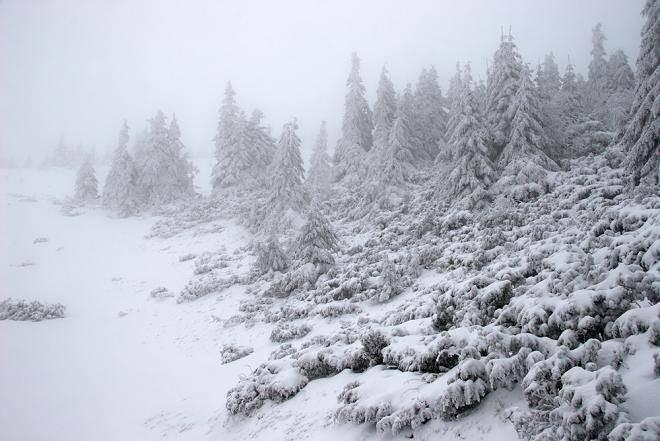 На юг Африки в июле 2021 года пришла настоящая зима со снегом и морозами