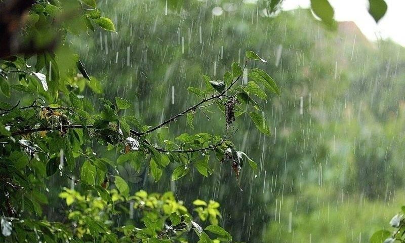 Почему попасть под дождь 2 августа на Ильин день считается полезным для здоровья