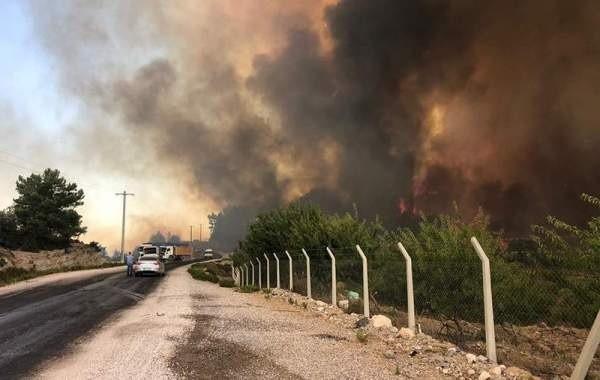 В Турции из-за лесных пожаров началась эвакуация туристов