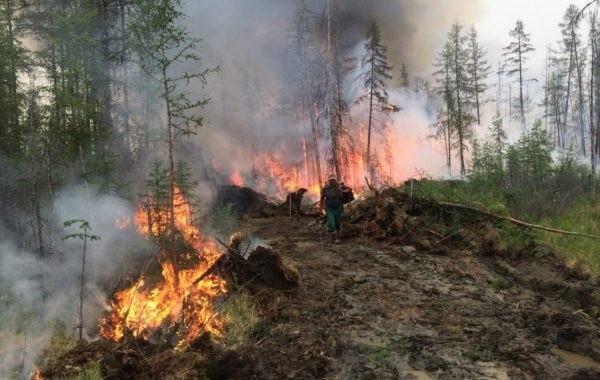 10 природных пожаров ликвидировали за сутки в Якутии