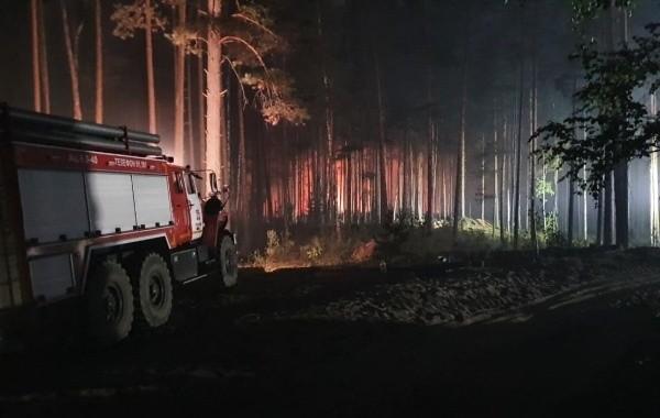 Свердловская область лидирует по числу лесных пожаров в России