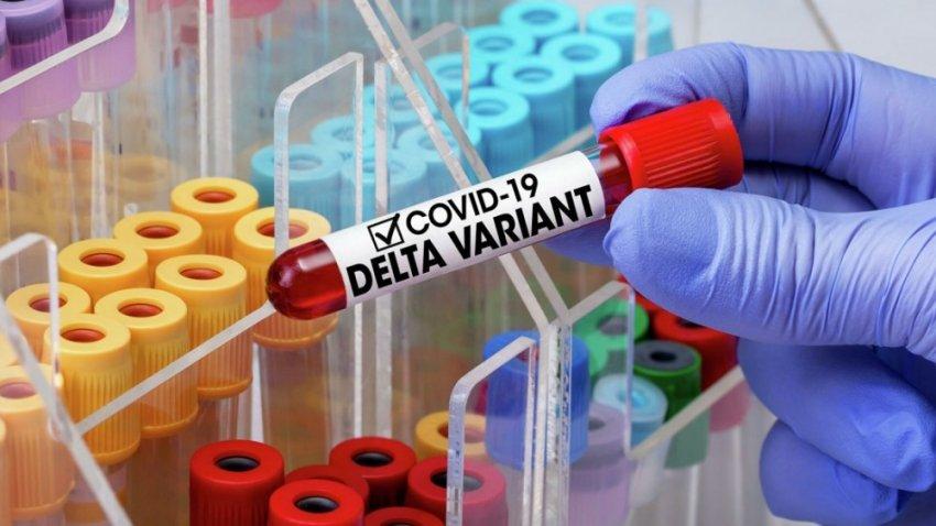 Как возникают мутации, стоит ли ждать новый штамм коронавируса?